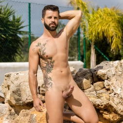 Colton Grey in 'Men' Incomparable (Thumbnail 19)